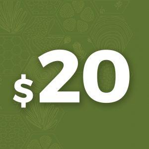 Minimum - $20